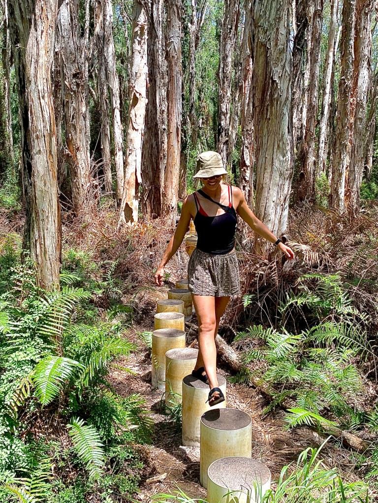 Paperbark Trail, Agnus Water